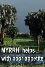 Ormus Rich Aloe Vera Cream with Myrrh